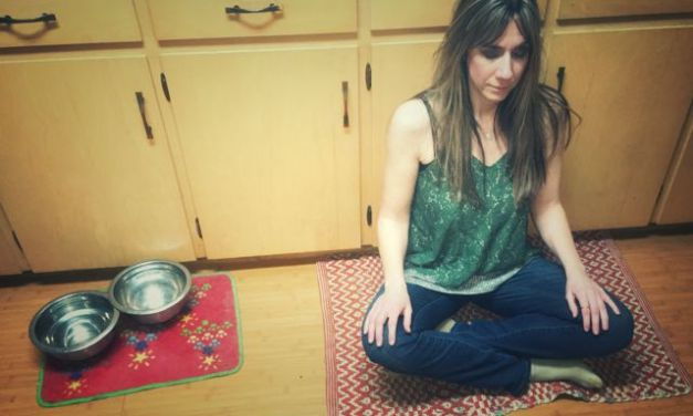 The Faces of Meditation: Dana Gornall