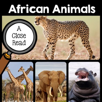african-animals-close-read