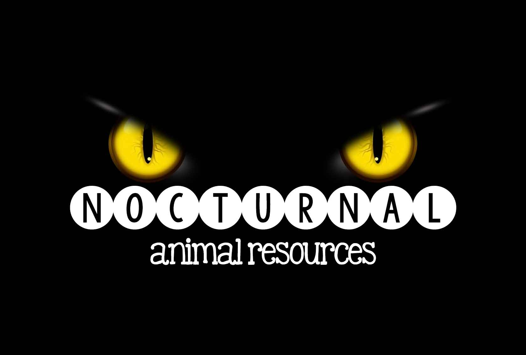 nocturnal-animal-resources
