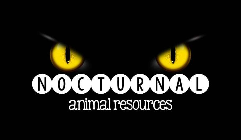 Nocturnal Animal Resources