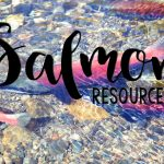Salmon Resources