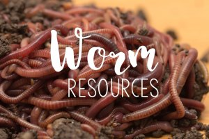 worm resources