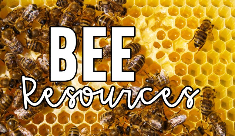 What's the Latest Buzz? Bee Resources