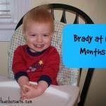 Brady at 18 Months