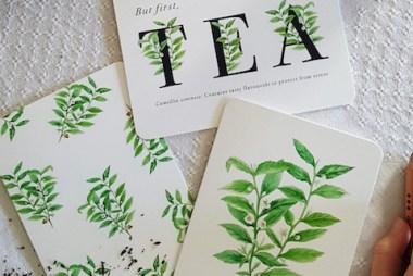 tea greeting cards