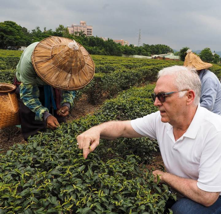 Bruce Richardson inspects Taiwan tea garden