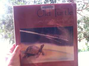 Old Turtle Book 2016