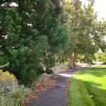 Thomas Creek Park Wild Child 9.16.17 #4