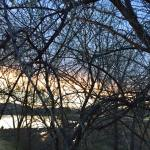 Team TLC Sunset Walk Vintage Lake 3.12.18 #4