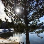 Thomas and Camilla Walk Vintage Lake 3.6.18 #4
