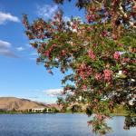 Sunset Walk Vintage Lake 5.28.18 #7