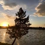 Sunset Walk with Thomas Vintage Lake 6.6.18 #8