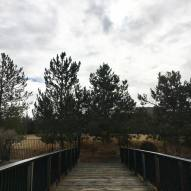 Walk with Thomas Vintage Lake bridge path 1.22.19 #2