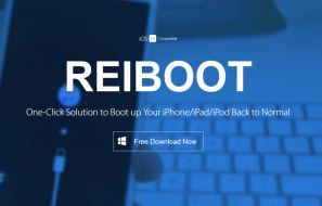 Tenorshare Reiboot Review