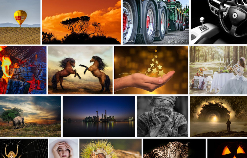 Best Websites to Download Images for Free