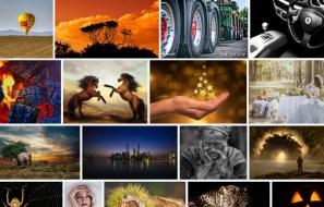 11 Best Websites to Download Free Images