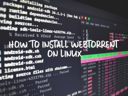 How to Install WebTorrent on Linux