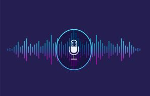 Importance of Voice Transcription in Video Content