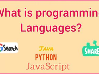 what is programming languages
