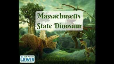 Lawmaker in Massachusetts wants to name official state dinosaur – it s viral