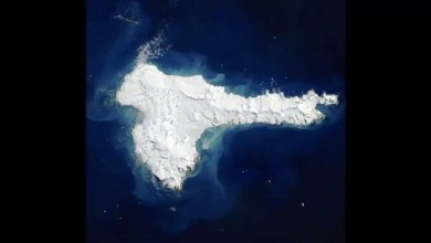 NASA shares rare cloud-free picture of Elephant Island. 'Stunning,' say netizens – it s viral