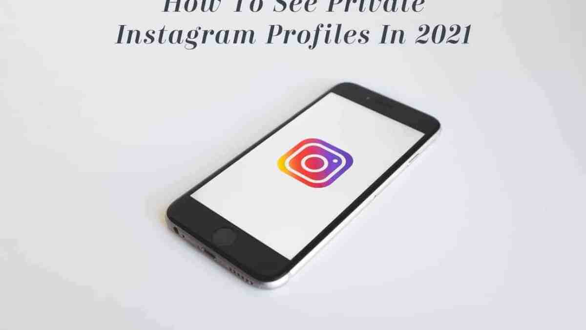 How Can I View Private Instagram in 2021