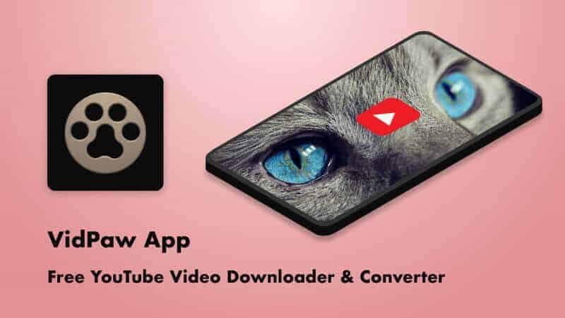 VidPaw Review – Best Video and MP3 Downloader