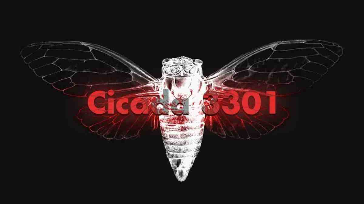 Everything you need to know about Cicada 3301 (An internet Mystery)