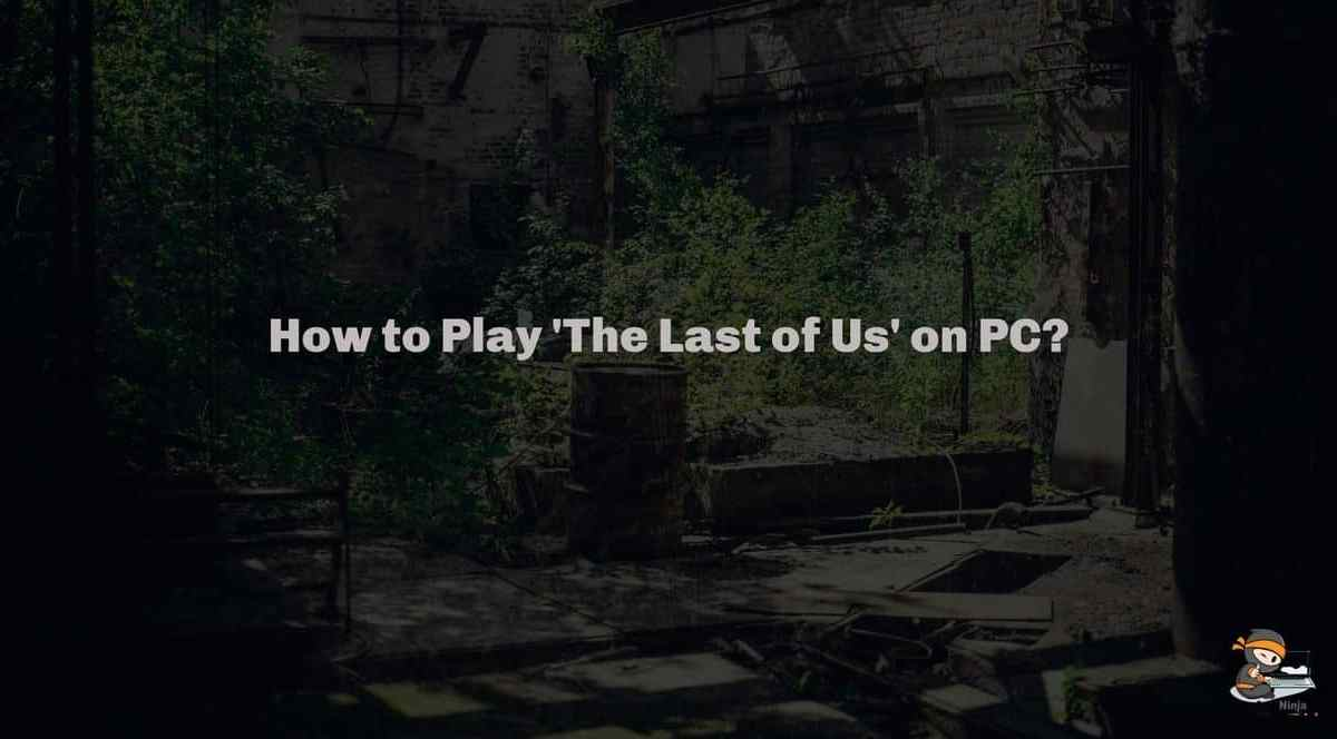 How to Play 'The Last of Us' on PC?