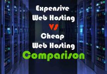 expensive-vs-cheap-web-hosting