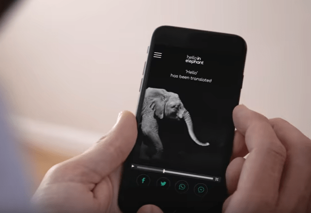An app that lets you communicate with elephants