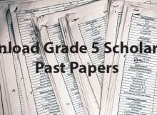 Grade 5 Scholarship Past Exam Papers
