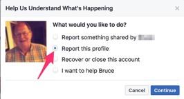 Reporting Facebook Cloning 2
