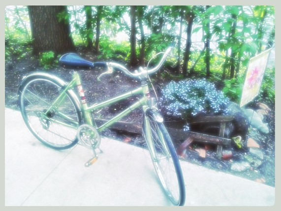 Ramblin' Rose ~ late 60's early 70's Canadian Tire Supercycle