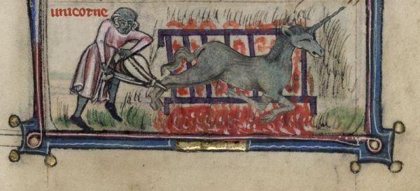 Roast unicorn