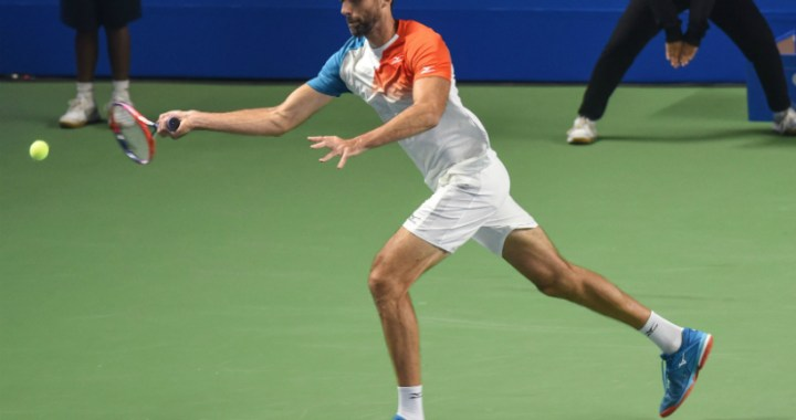 Ivo Karlovic: I hope I will continue to perform at this level