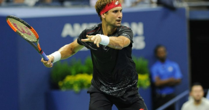 David Ferrer: Chose the perfect moment to complete a career