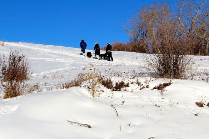 tennis-tourist-nose-hill-hike-winter-calgary-teri-church