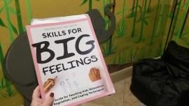 skills for big feelings book