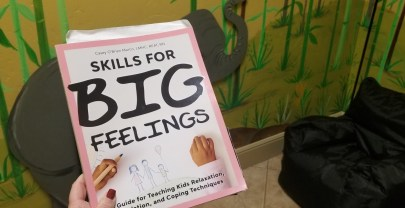 Skills for Big Feelings – Review