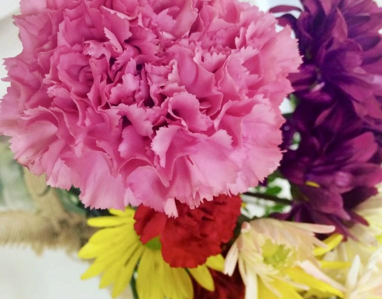 Planting Seeds : The Assurance of Faith