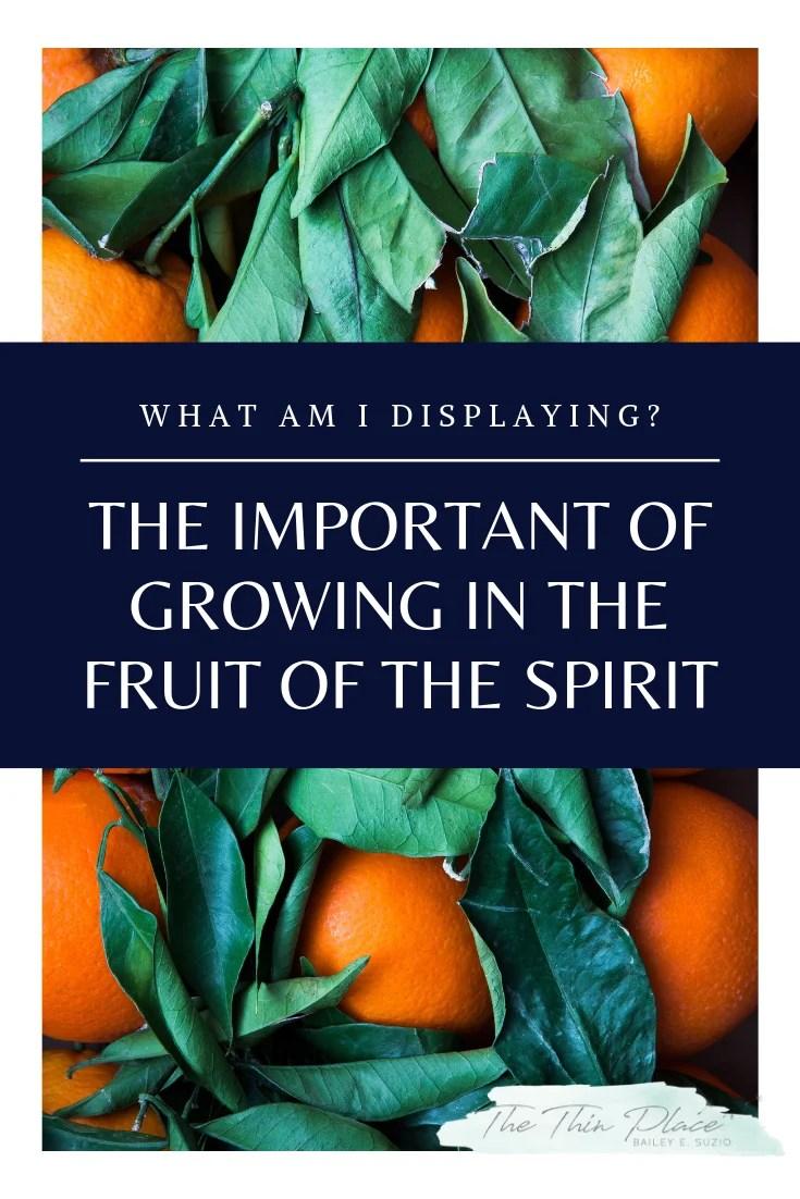 What Am I Displaying? Growing the Fruit of the Spirit in My Life #FruitoftheSpirit #HolySpirit #Devotinal #BibleStudy #ChristianWomen