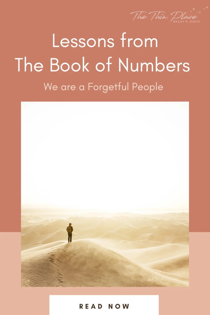 The Book of Numbers is full of important lessons for Christians toda - namely, that we are prone to forgetfulness #devotional #biblestudy #christianwomem #bibletime #oldtestament