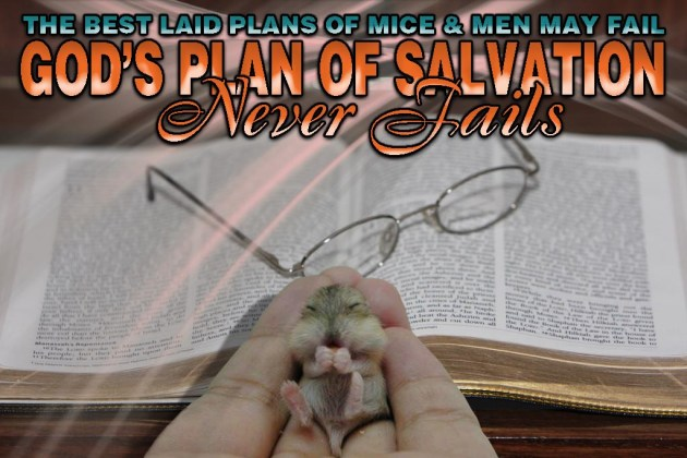 best-laid-plans-of-mice-and-men1