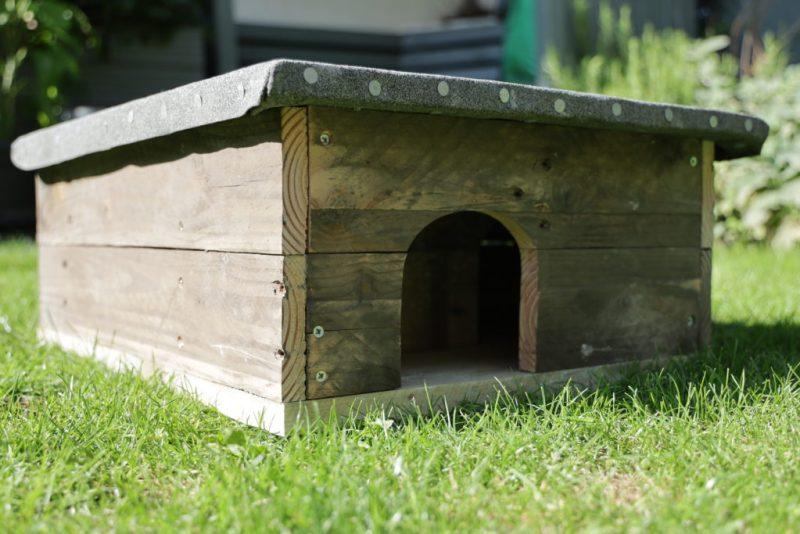 Homemade hedgehog house