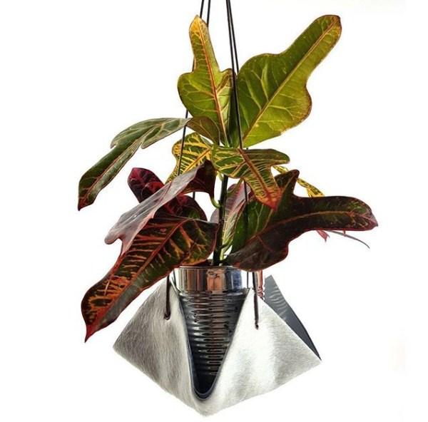 Indoor plant hammock with free plant!