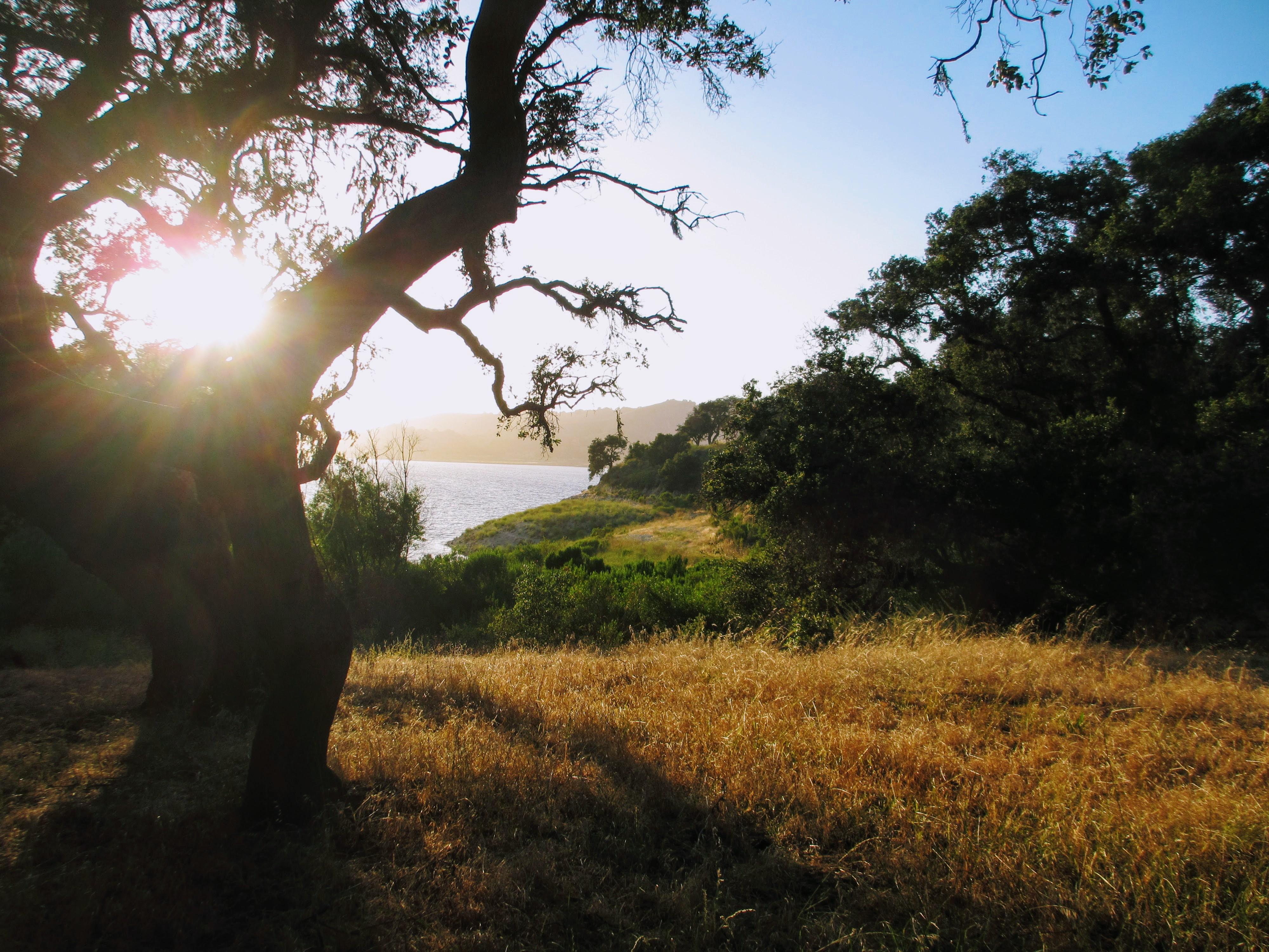 Summer Camping Series: Lake Cachuma
