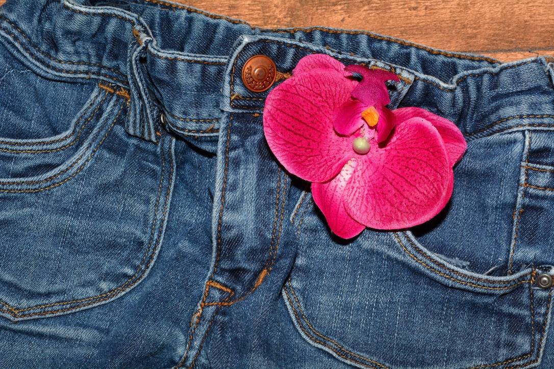 jeans-pants-clothing-blue-jeans-40876