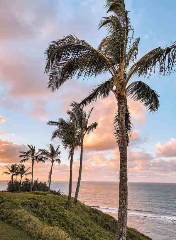 One Week in Kauai