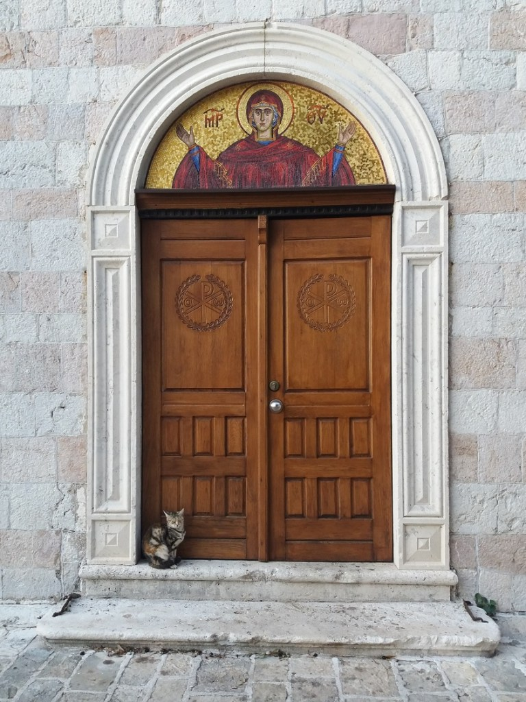 Cat sitting in a doorway in Budav, Montenegro